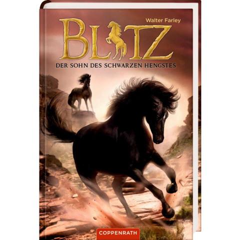 Blitz (Bd. 3)
