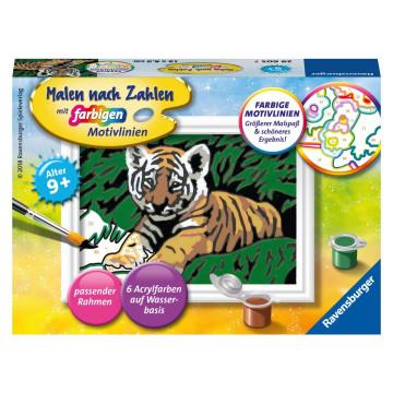 Malen nach Zahlen Süßer Tiger