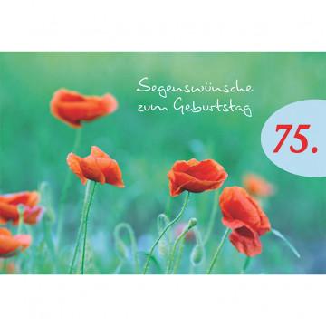 Doppelkarte Segenswünsche zum 75. Geburtstag (6 Stück)