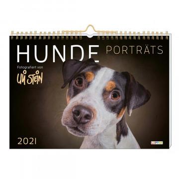 Kalender »Uli Stein - Hunde Porträts 2021«