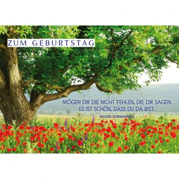 Postkarte Zum Geburtstag (10 Stück)