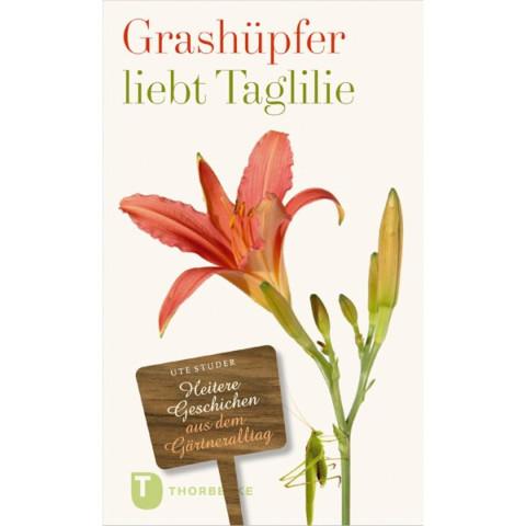 Grashüpfer liebt Taglilie