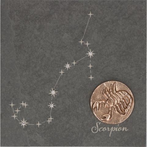 Skorpion französisch (1 Stück)