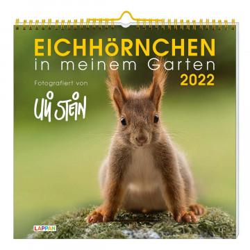 Eichhörnchen in meinem Garten 2022