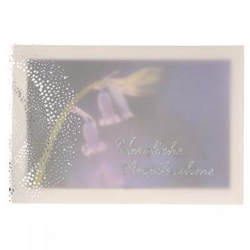 Trauerkarte mit Transparentumleger Herzliche Anteilnahme (6 Stück)