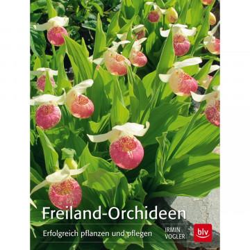 Freiland-Orchideen