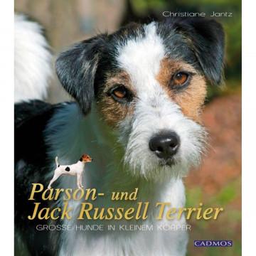 Parson- und Jack Russel Terrier