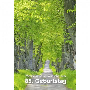 Glückwunschkarte Herzliche Glückwünsche zum 85. Geburtstag (6 Stück)