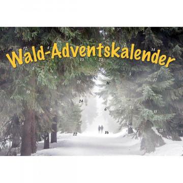 Durch den Wald im Advent