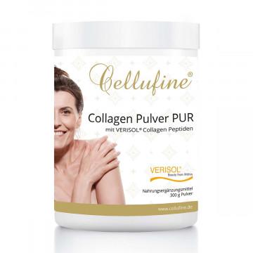 Collagen-Pulver